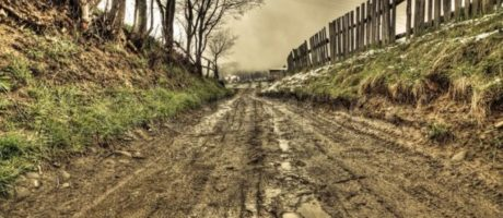 El gran Camino II. Suspendiendo juicios
